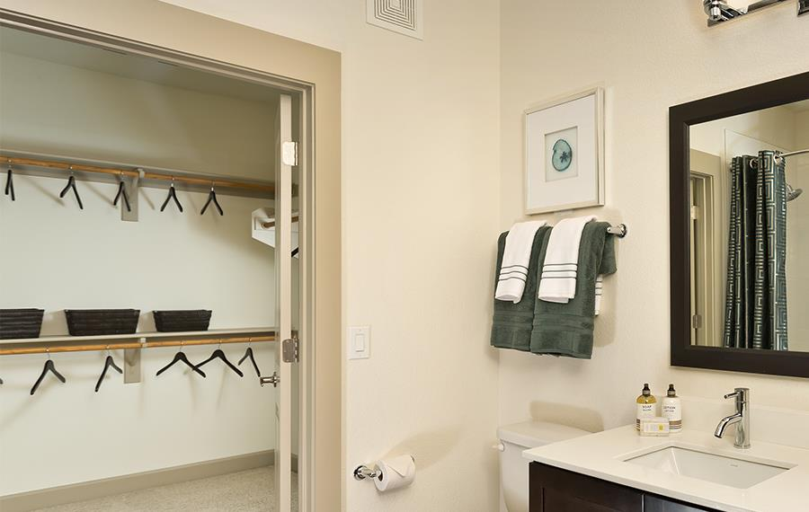 Camelback East Apartments - Citrine Apartments with Walk-in Closets