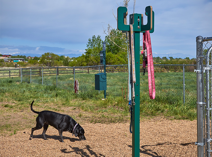 Aurora apartments near Cherry Creek Trail - Coyote Ranch Outdoor dog park