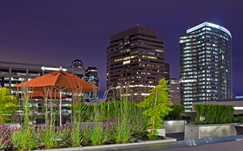 Metro 112 Rooftop terrace with grills and firepit Bellevue WA - Downtown Bellevue