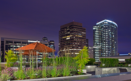 Downtown Bellevue apartments for rent near Microsoft - Metro 112 Rooftop terrace with grills and firepit