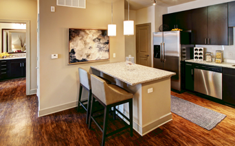Cadence Cool Springs apartments for rent in Williamson County School District - fully equipped kitchen
