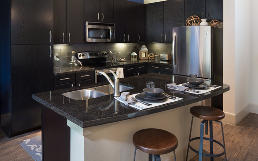 District at Washington Gourmet kitchens with GE stainless steel appliances Houston TX - Greater Heights