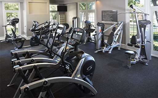 Villas At Stonebridge Ranch - Fitness center - Stonebridge Ranch Apartments in McKinney TX