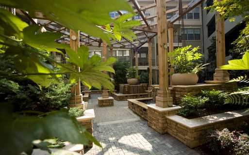 Chastain Park apartments in Buckhead - Gramercy At Buckhead Beautiful green courtyard