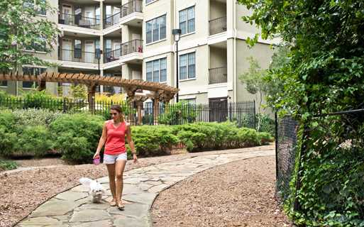 apartments near atlanta ga - Gramercy At Buckhead dog walk