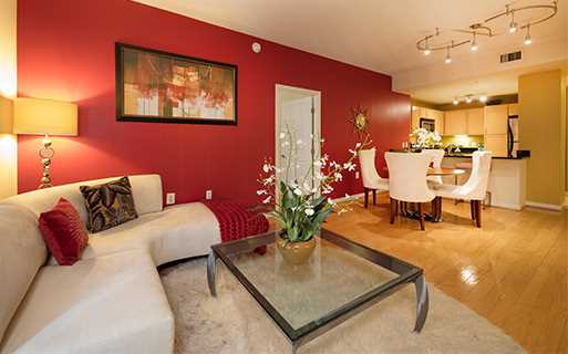 Pearson Square Apartments near Markon Inc - Falls Church, VA - living room