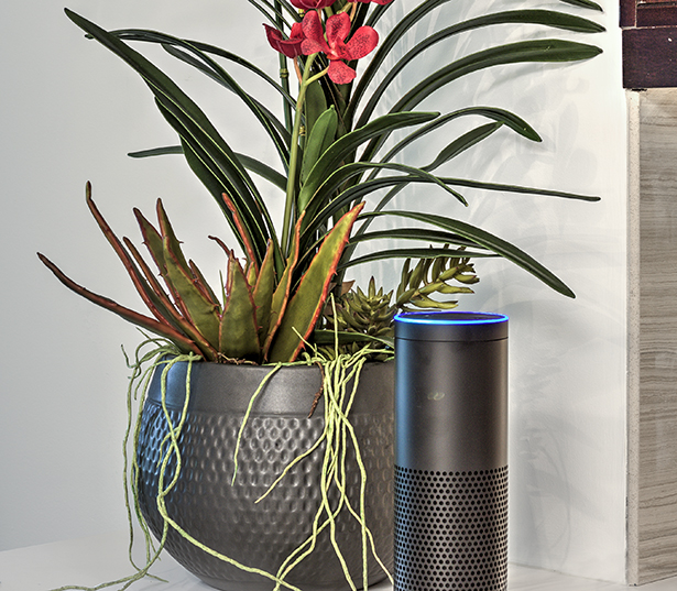 "The Encore South Park has ""Alexa"" Amazon Echo with every home Charlotte NC - Barclay Downs"