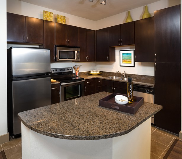 2125 Yale Kitchen with stainless steel appliances and espresso cabinets Houston TX - The Heights