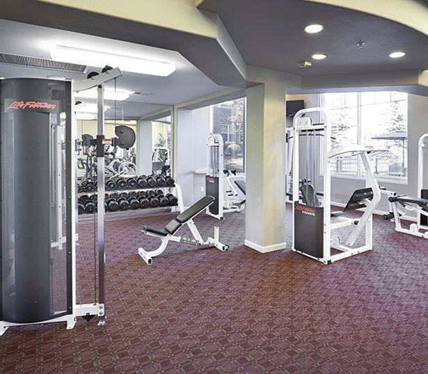 Apartments & Townhomes for rent in Merdian - The Meadows At Meridian Weight room area