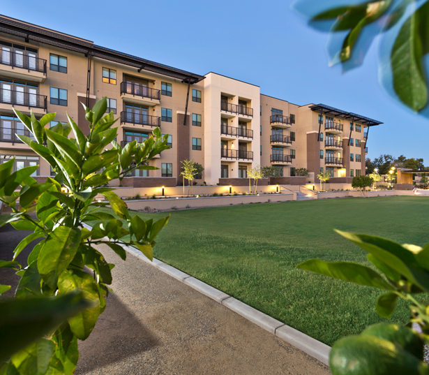 Scottsdale Springs Apartments: Camelback Apartments In Phoenix
