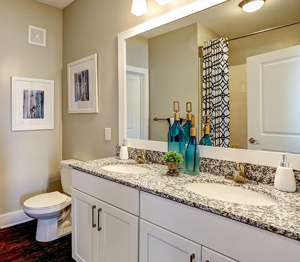 Apartments with Gwinnett County Public Schools - Artisan Station Apartments Bathroom