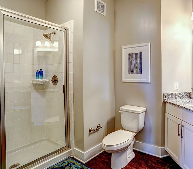 Suwanee apartments for rent - Artisan Station Apartments Bathroom