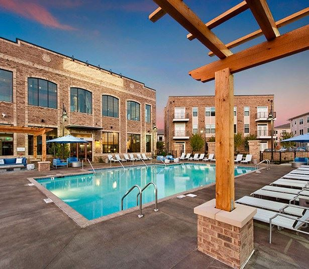 Cool Springs apartments in Franklin - Cadence Cool Springs resort style saltwater swimming pool