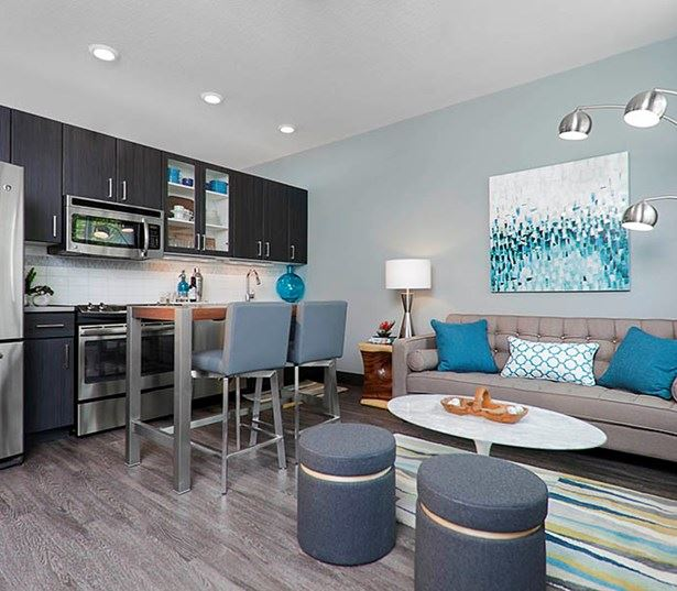 Studio LoHi Stylish kitchens with stainless steel appliances Denver CO - Apartments near Downtown