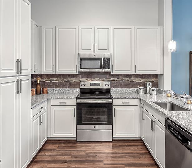 2700 Charlotte Stainless steel appliances - nashville apartments for rent