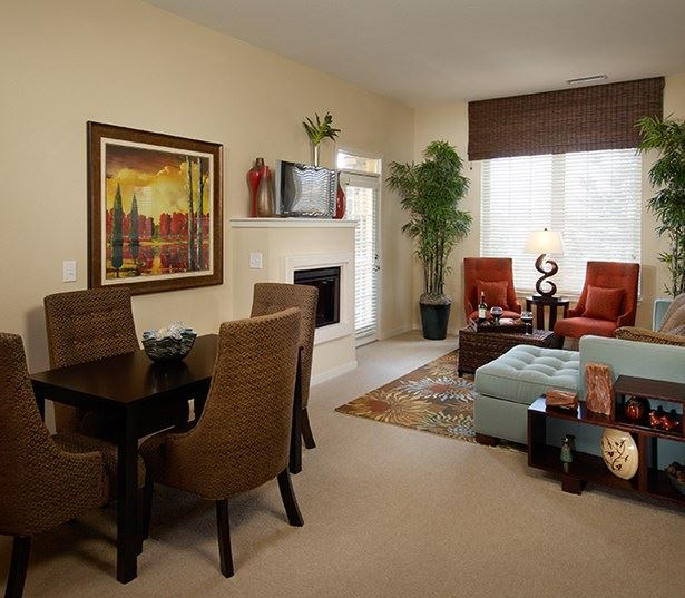 Southeast Aurora apartments and townhomes - The Sanctuary At Tallyn's Reach living room fireplace
