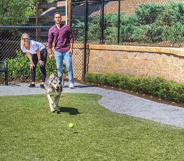 Apartments with Gwinnett County Public Schools - Artisan Station Bark Park