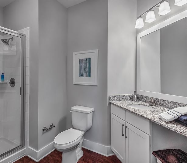 Suwanee apartments near Oracle - Artisan Station Apartments bathroom