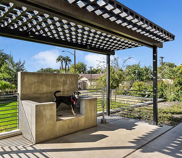 Arcadia Phoenix apartments - Citrine Outdoor pet spa