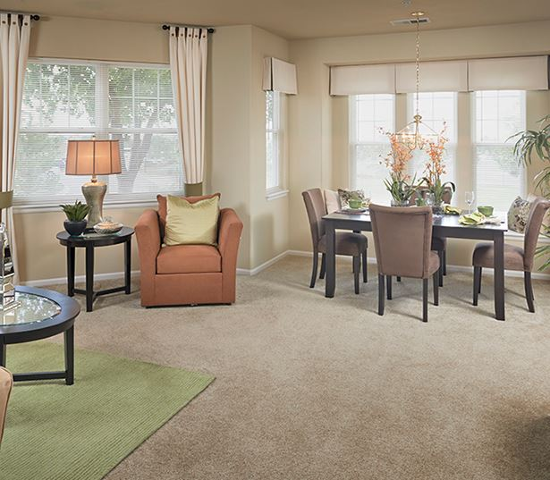 Apartments for rent near Lone Tree - The Meadows At Meridian Spacious living room/ dining area