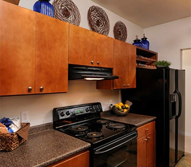 Promenade Park Kitchens black appliances and built in microwaves Charlotte NC - Ballanytne
