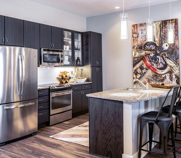 Hartley Flats Kitchen with stainless steel appliances Denver CO - Ballpark
