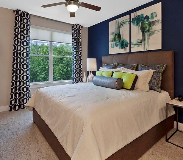 Marshall Park apartment homes in raleigh nc - Spacious bedroom with solar window shades