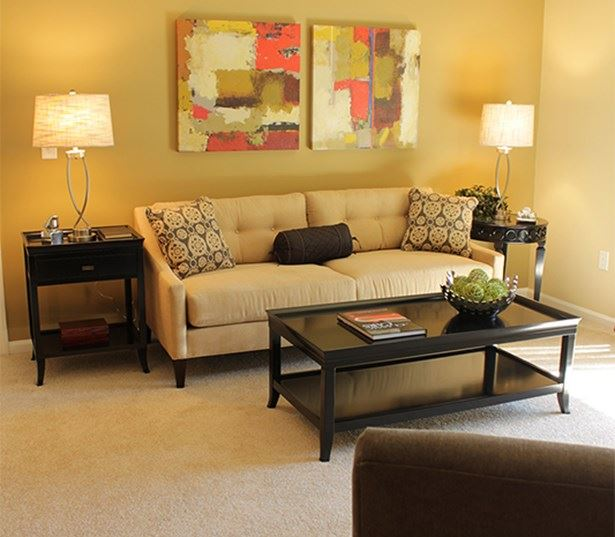 Menlo Creek apartments for rent in Johns Creek - Lush carpeting in living room and bedroom
