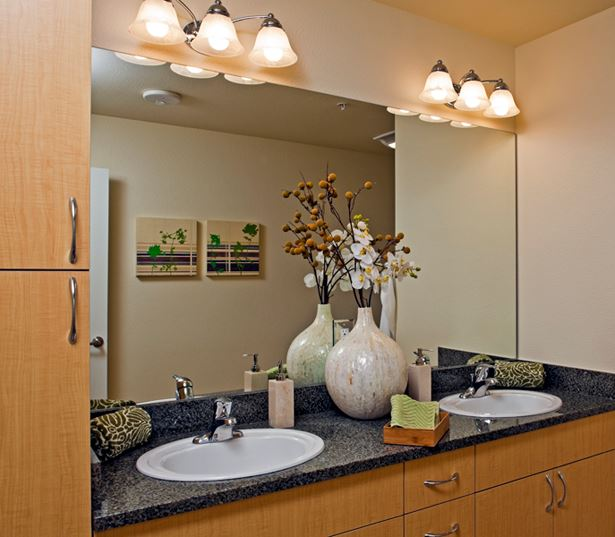 Apartments for rent Bellevue WA - Metro 112 Apartments - dual vanities