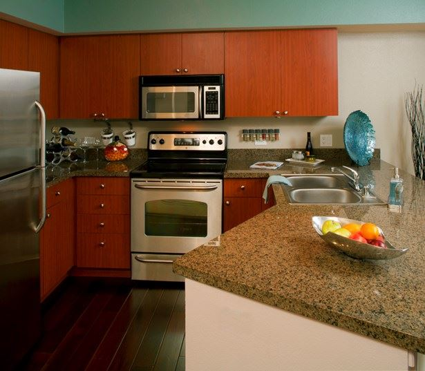 Neptune apartments for rent in Westlake - Modern kitchen built in microwave