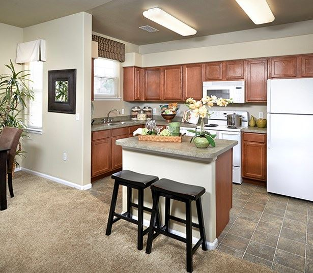 apartments in parker - The Meadows At Meridian Modern Kitchen interior with breakfast bar