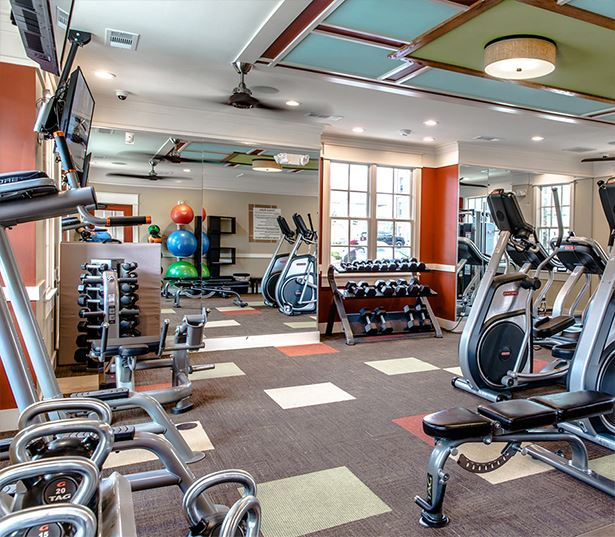 Apartments with Gwinnett County Public Schools - Artisan Station Apartments Fitness Center