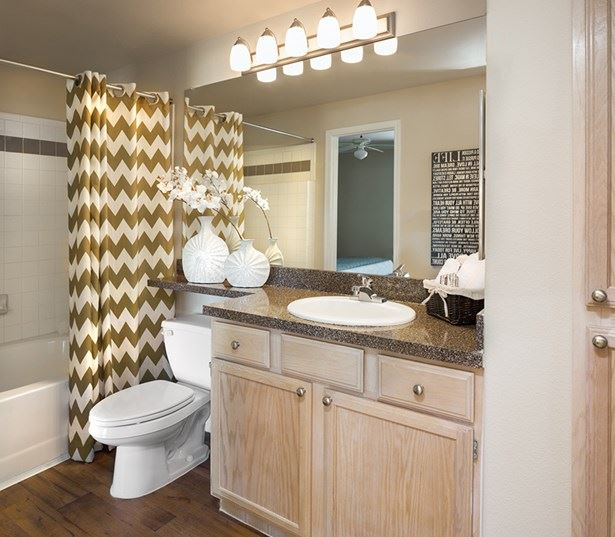 Villas at Stonebridge Ranch - Upgraded bathrooms - McKinney, TX Apartments