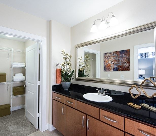 Lofts near Denver Health - The Boulevard Apartments Bathrooms with granite countertops