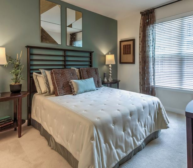 Vienna apartments near Capital One - The Reserve at Tysons Corner Plush carpeting