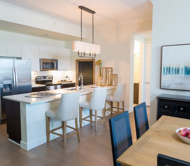 Shops at Buckhead apartments - The Residence Buckhead Atlanta stainless steel appliances