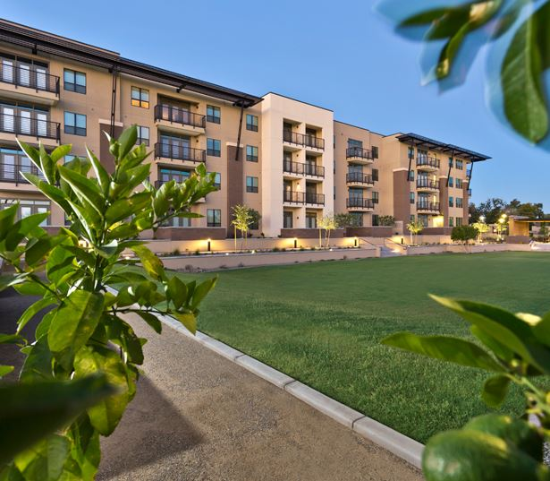 Camelback Apartments In Phoenix Citrine Gallery